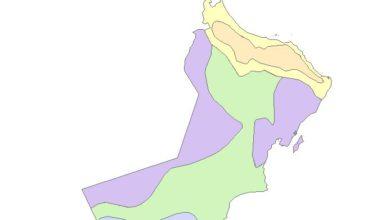 Photo of قاعدة بيانات النبات الطبيعي في عُمان