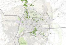 Photo of قاعدة بيانات الغطاء النباتي بالمدينة المنورة لاعوام ( 2000 – 2009 – 2018 )