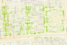 Photo of قاعدة بيانات محلات بلدية جدة – المملكة العربية السعودية